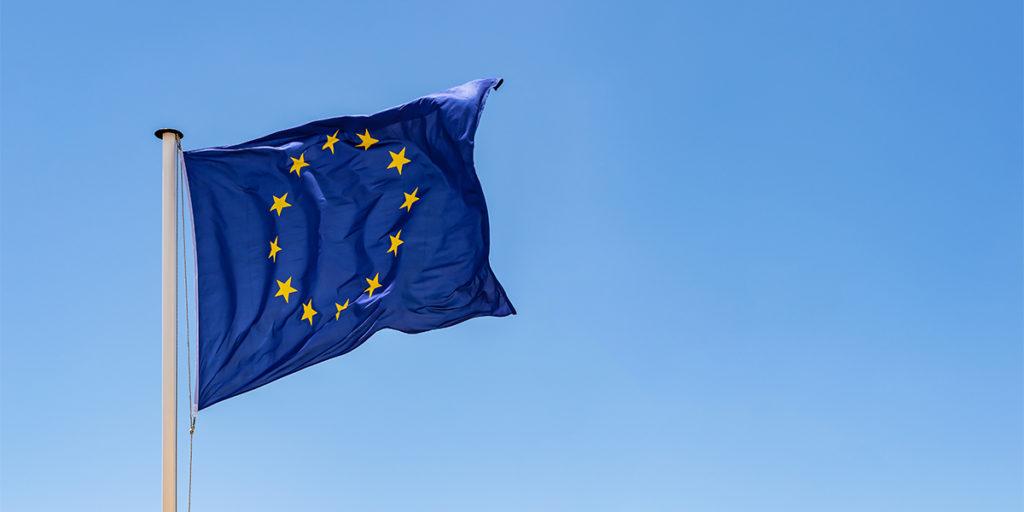 Nur EU Fahrerlaubnis im Fuhrpark